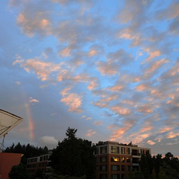 代々木公園上空と傍らに虹